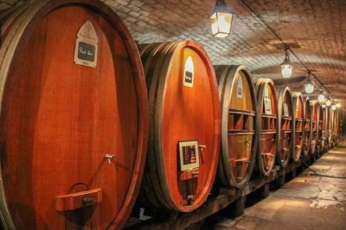 Wine barrels at the historic wine cave in Strasbourg, France
