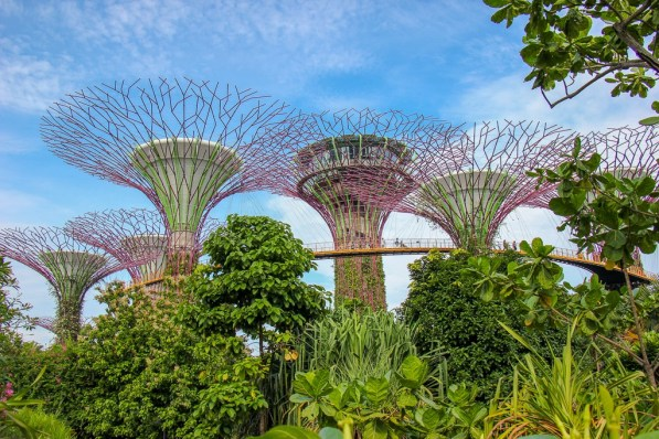 SuperTree Grove and OCBC Skyway at Gardens by the Bay in Singapore