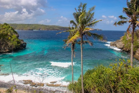 Palm trees over Secret Beach from viewpoint on Nusa Ceningan, Bali, Indonesia