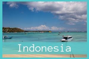 Indonesia Posts