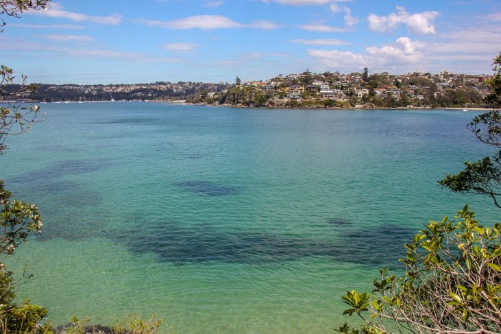 Pale blue water in beautiful bay on route from Manly to Spit in Sydney, Australia