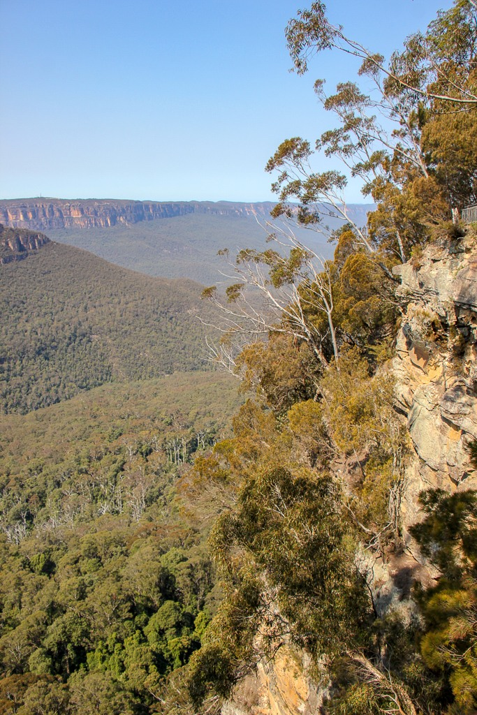 Prince Henry Cliff Walk Viewpoint in Blue Mountains NP near Sydney, Australia