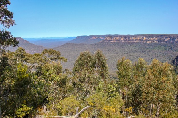 Blue Mountains National Park viewpoint from Prince Henry Cliff Walk near Sydney, Australia