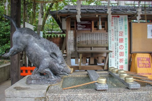 Statue of boar at Go'o Shinto Shrine in Kyoto, Japan