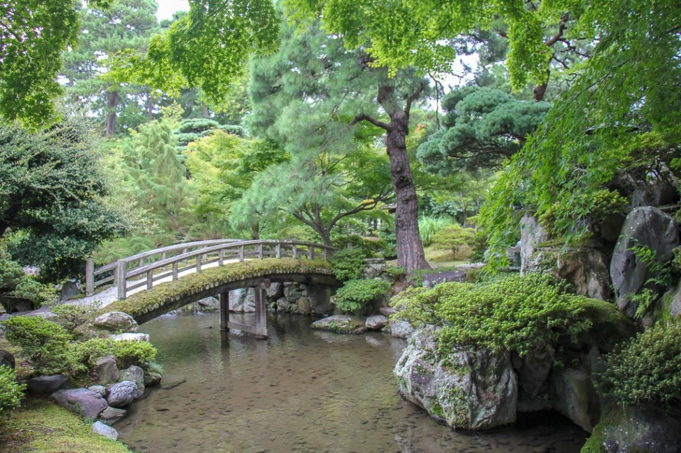 Bridge over pond in lush garden in Kyoto, Japan