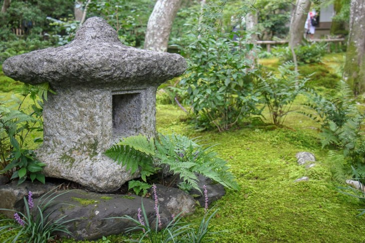 Moss-covered forest at Gioji Temple in Kyoto, Japan