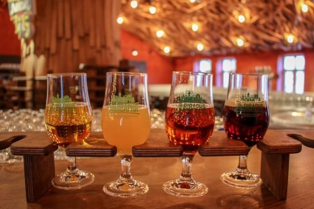 Sample tray of fresh beer at Beer Museum in Lviv, Ukraine