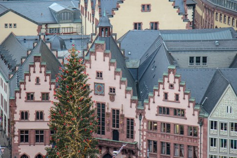 Christmas Tree in front of gabled Romer City Hall in Frankfurt, Germany