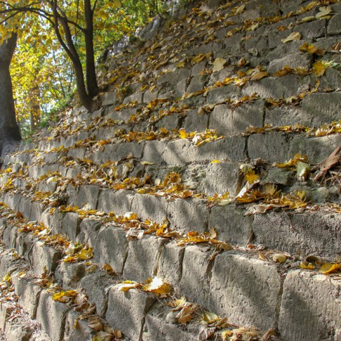 Fall Leafs, Park High Castle, Lviv, Ukraine