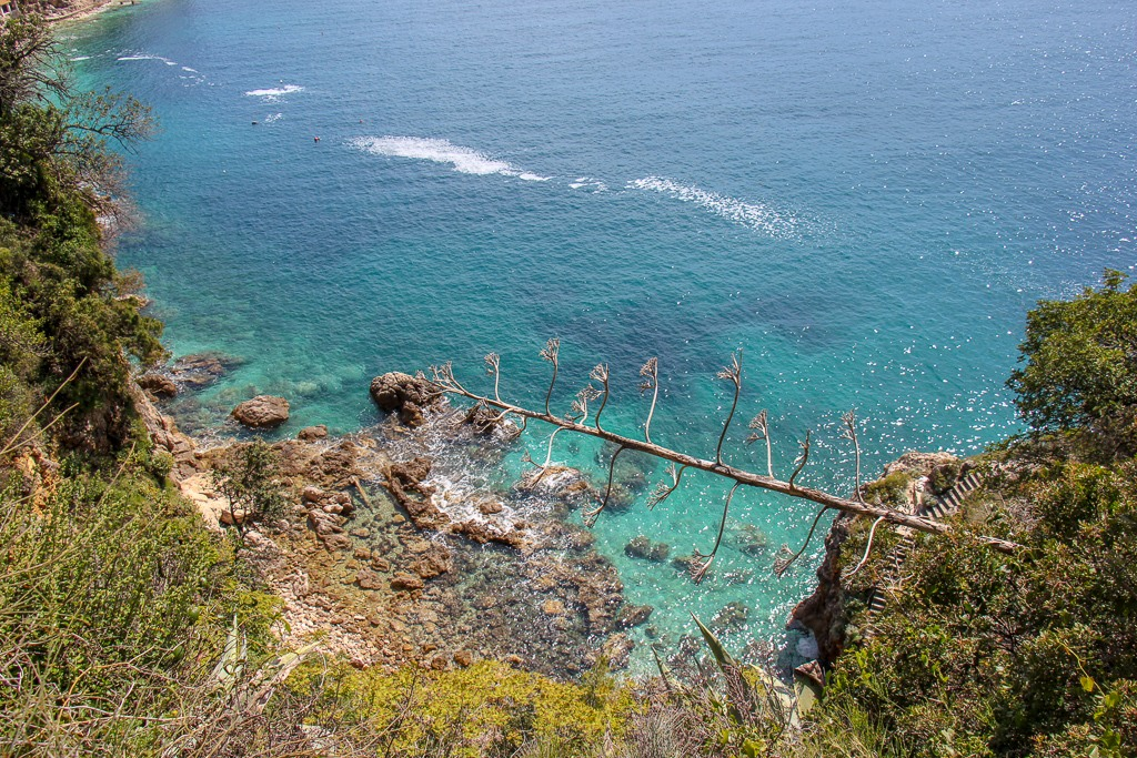 Turquoise water in cove along shoreline in Dubrovnik, Croatia