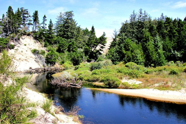 The Tahkenitch Creek near Florence, Oregon