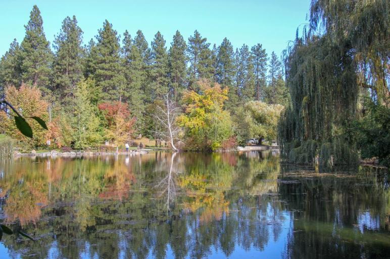 Manito Park Pond, Spokane WA