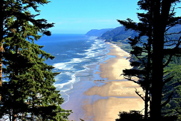 View of Hobbit-Beach-from-Heceta-Head-Trail-Florence-Oregon