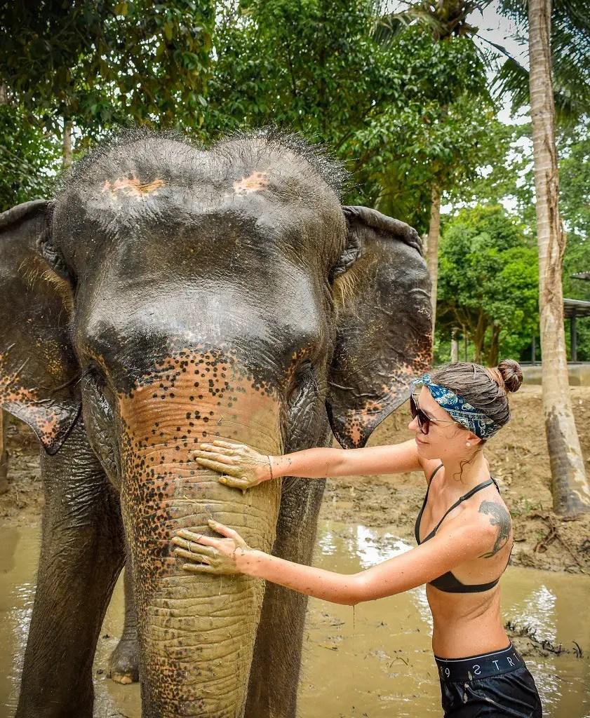 ethical-elephant-sanctuary-koh-samui