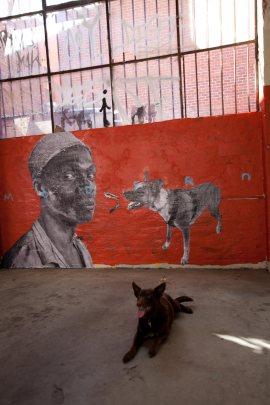 'modern'-with-dog