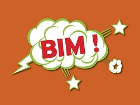 Logo BIM