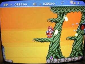 legend of hero tonma pc engine 10