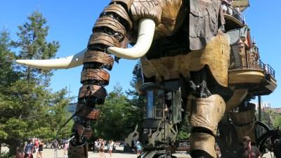Qui veut devenir conducteur d'éléphant à Nantes ?