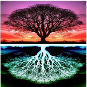 Transpersonal Psychology - as above, so below