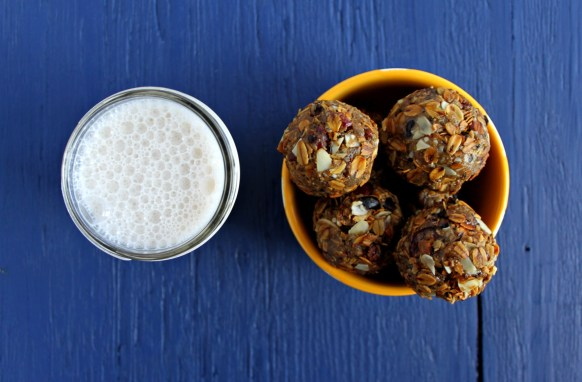 sunflower granola balls jewhungry