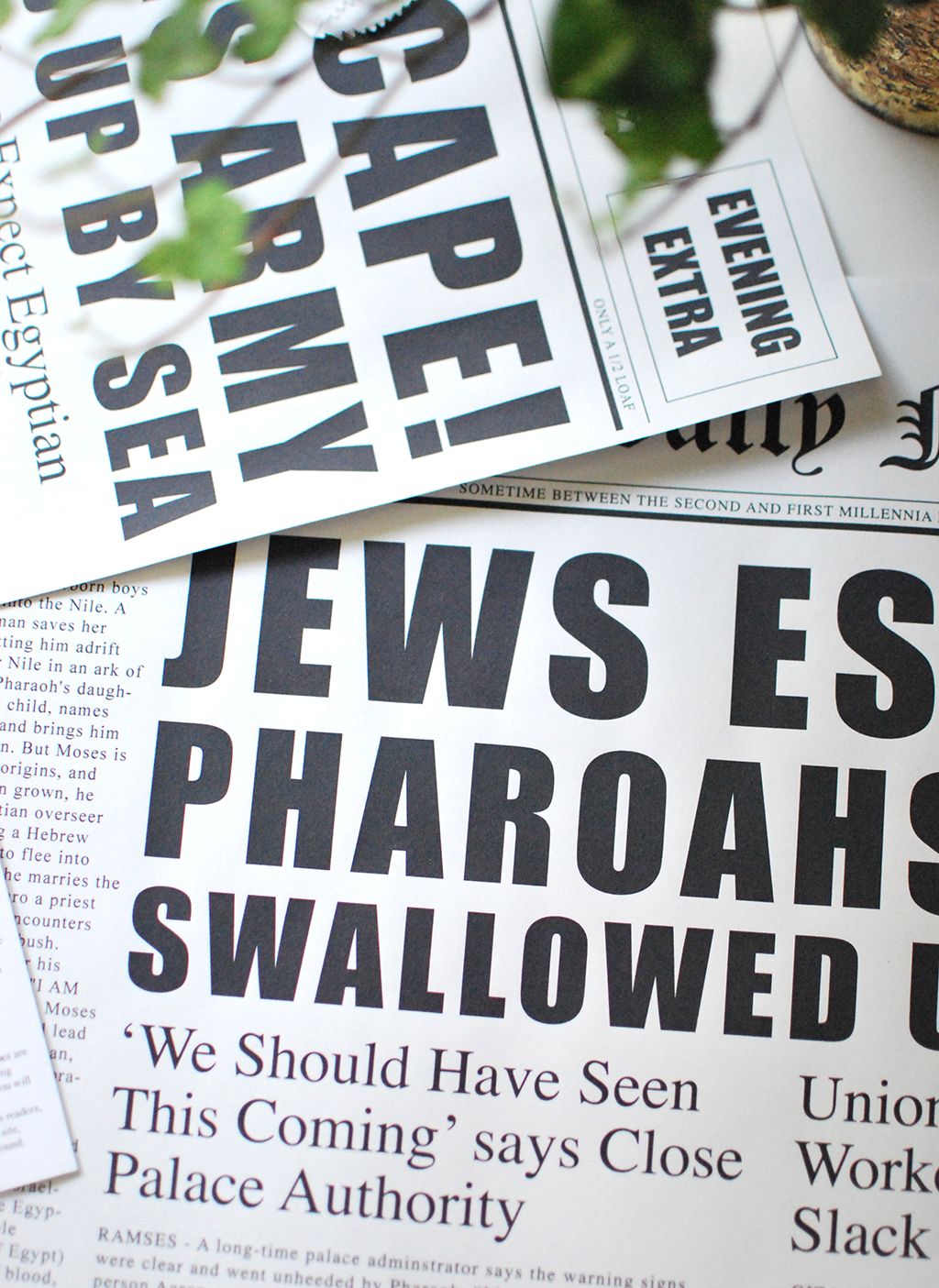 Fake News Passover Seder Set by Chai and Home