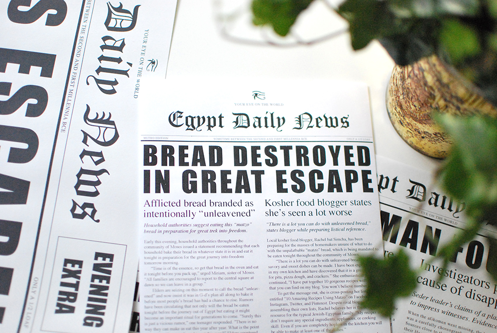 Fake News Passover Seder Set
