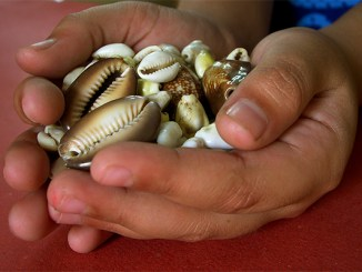 """Handful of Treasures,"" by Sudarshan V, via Flickr.com under Creative Commons license."