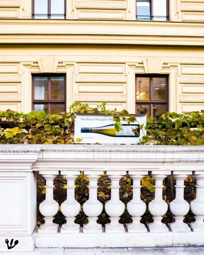 """Wine from Vienna: """"Wiener Gemischter Satz"""" #UrbanVineyards"""