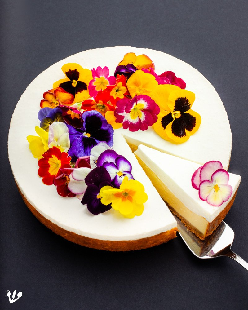 a slice of a whole blooming-Jewish-cheesecake-4x5-featured