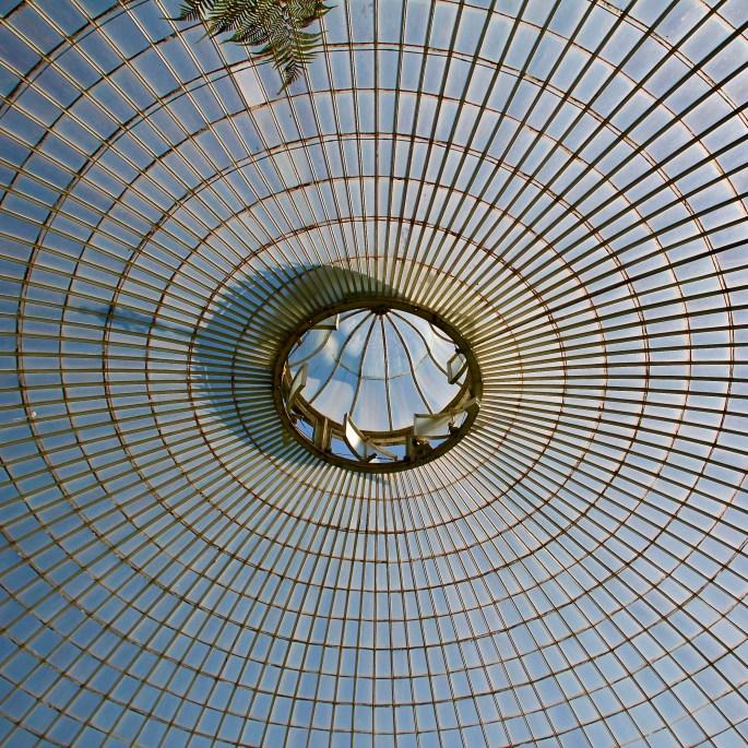 Converging Lines by Jez Braithwaite