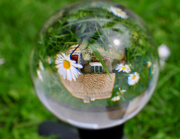 Daisy Cottage in a lensball
