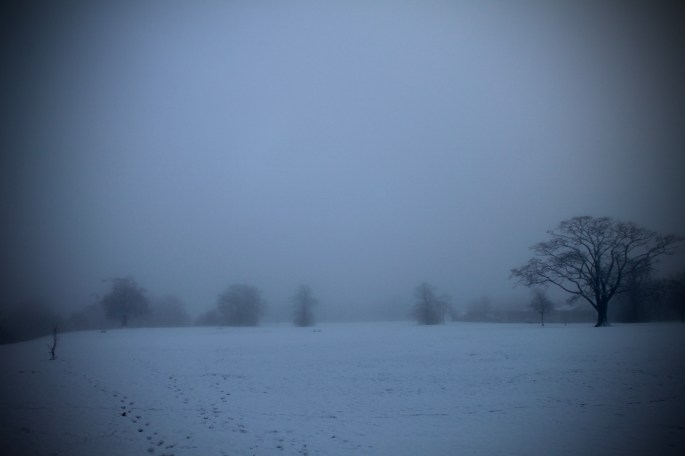 A foggy Cumbernauld House Park