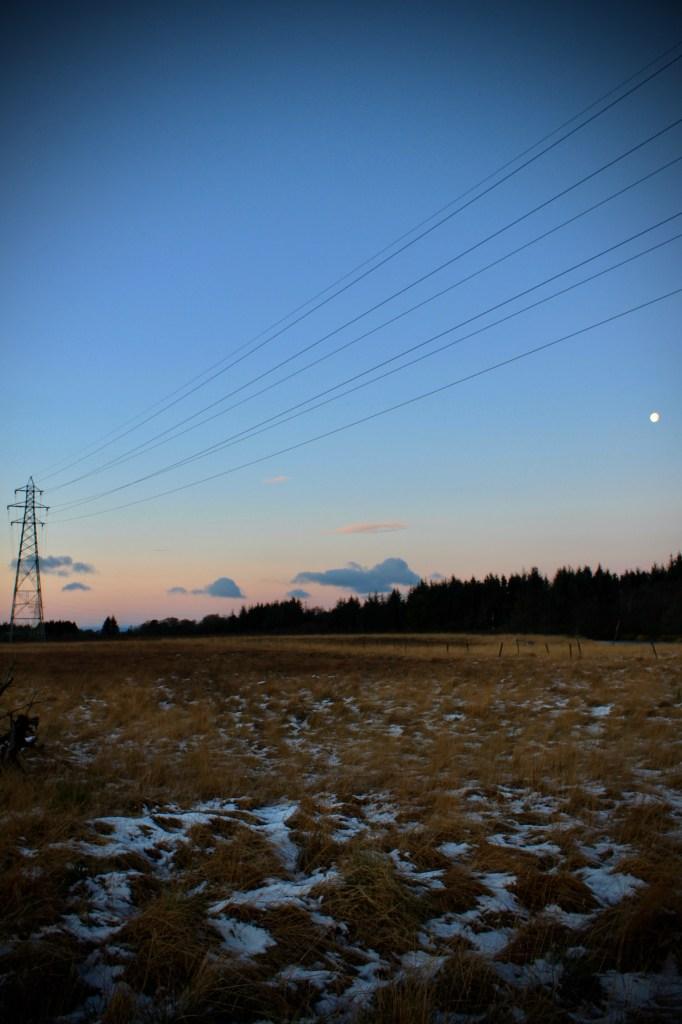 Palaceriig Country Park at dawn