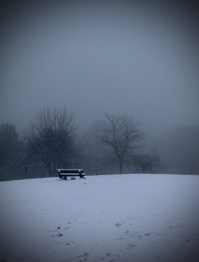 A cold bench in the fog