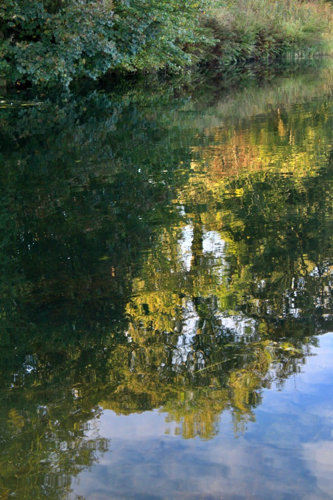 Reflected trees in the Forth & Clyde Canal