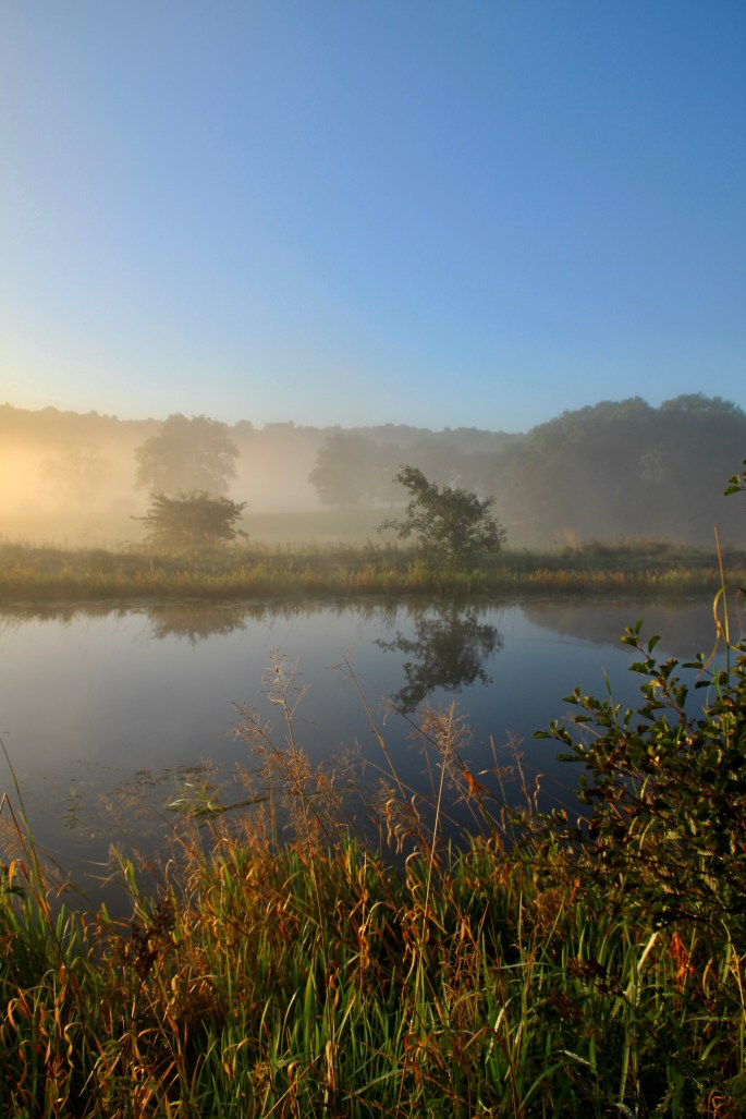 Misty morning on the Forth & Clyde Canal