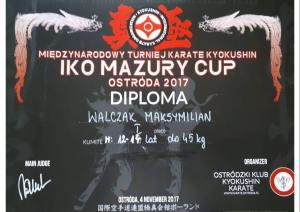 %name Maksymilian Walczak z 2 b GJ mistrzem karate!