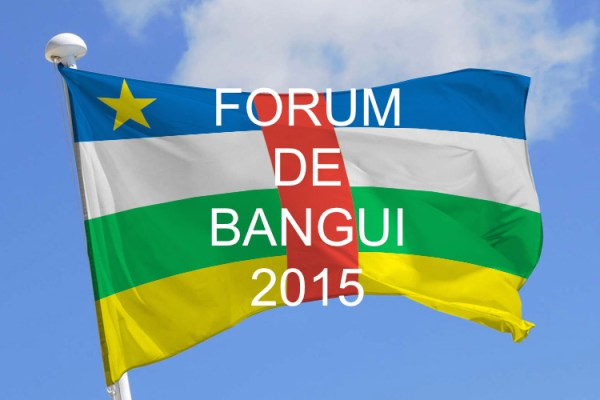 Préparation du Forum de Bangui : l'équipe IpaP «Paix, justice et réconciliation» est au travail