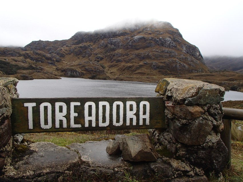 Toreadora Lake, there are over 200 lakes in Cajas NP
