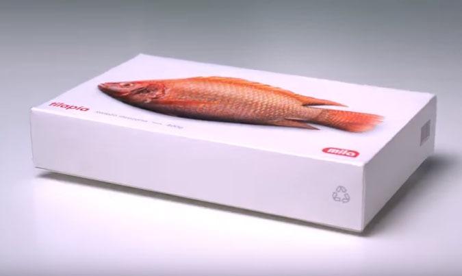 Un emballage de poisson qui donne l 39 impression d 39 tre for Donne poisson