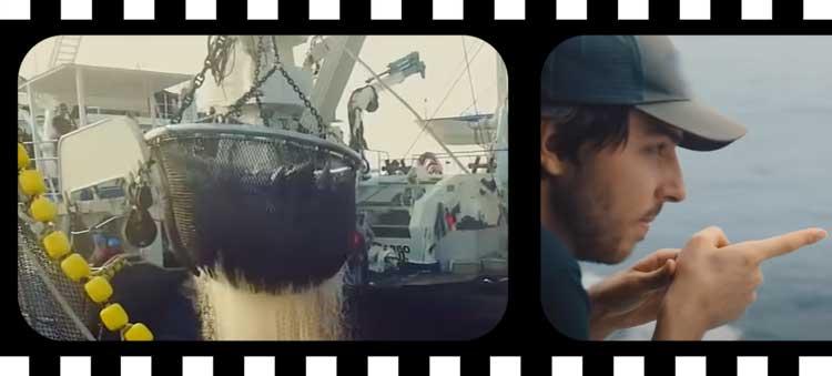 Documentaire environnement Netflix : Seasperacy