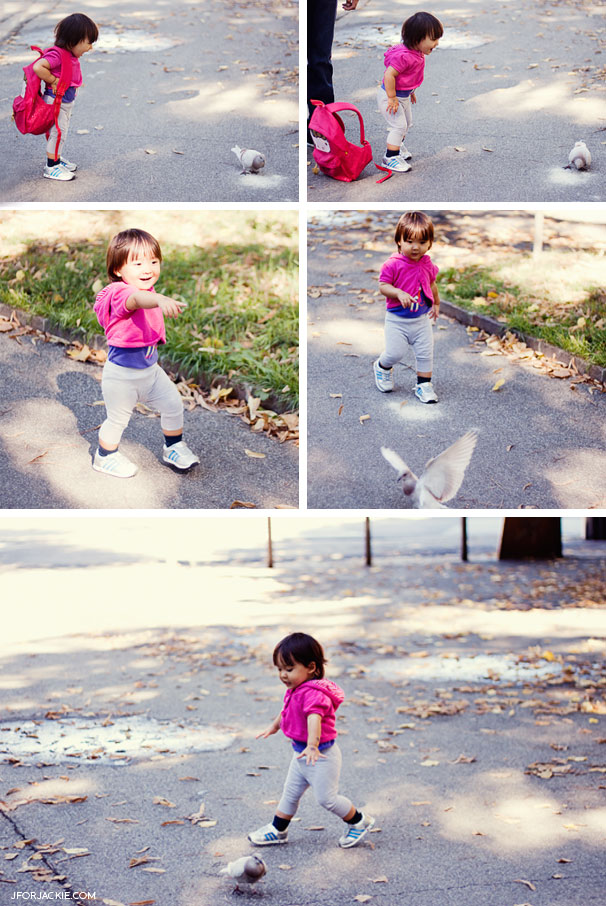 Julienne chasing birds at the park
