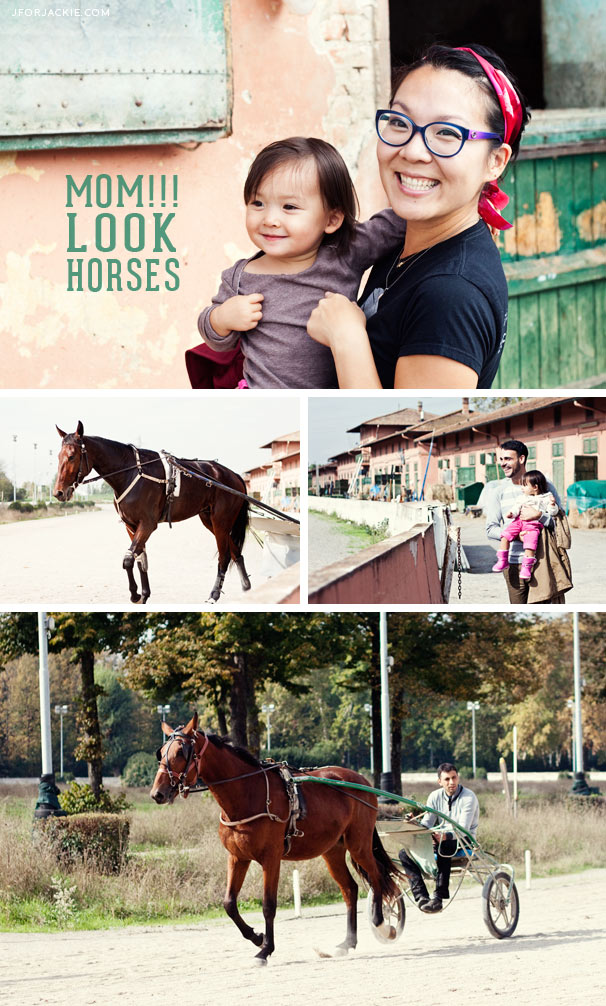 horses-julienne