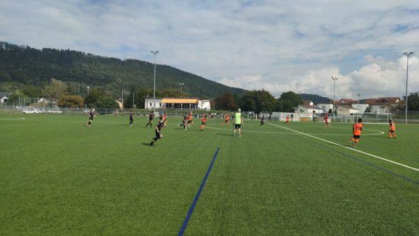 D1 gewinnt letzen Test gegen Laufenburg 1
