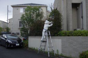 ゴーストバスターズ登場!