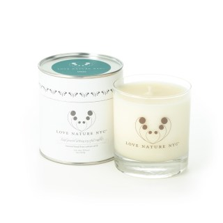 Inspired by Nature Spruce Candle
