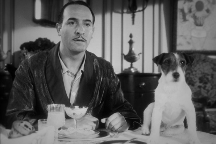 /home/tribu/public html/wp content/uploads/sites/14/2016/01/jean dujardin and the star of the film