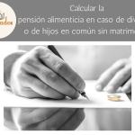 Cómo calcularla pensión alimenticia en caso de divorcio