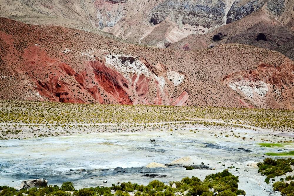 [Fotografía] - Altiplano Norte de Chile (1/6)