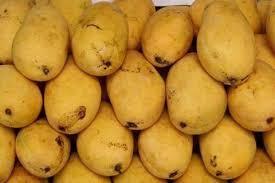 Mango [मेंगो] – आम [Aam]